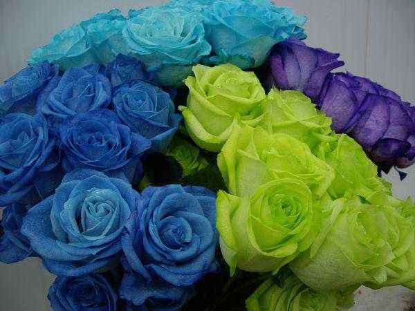Rosa Teñida - Flores Importadas por Flores Musacco